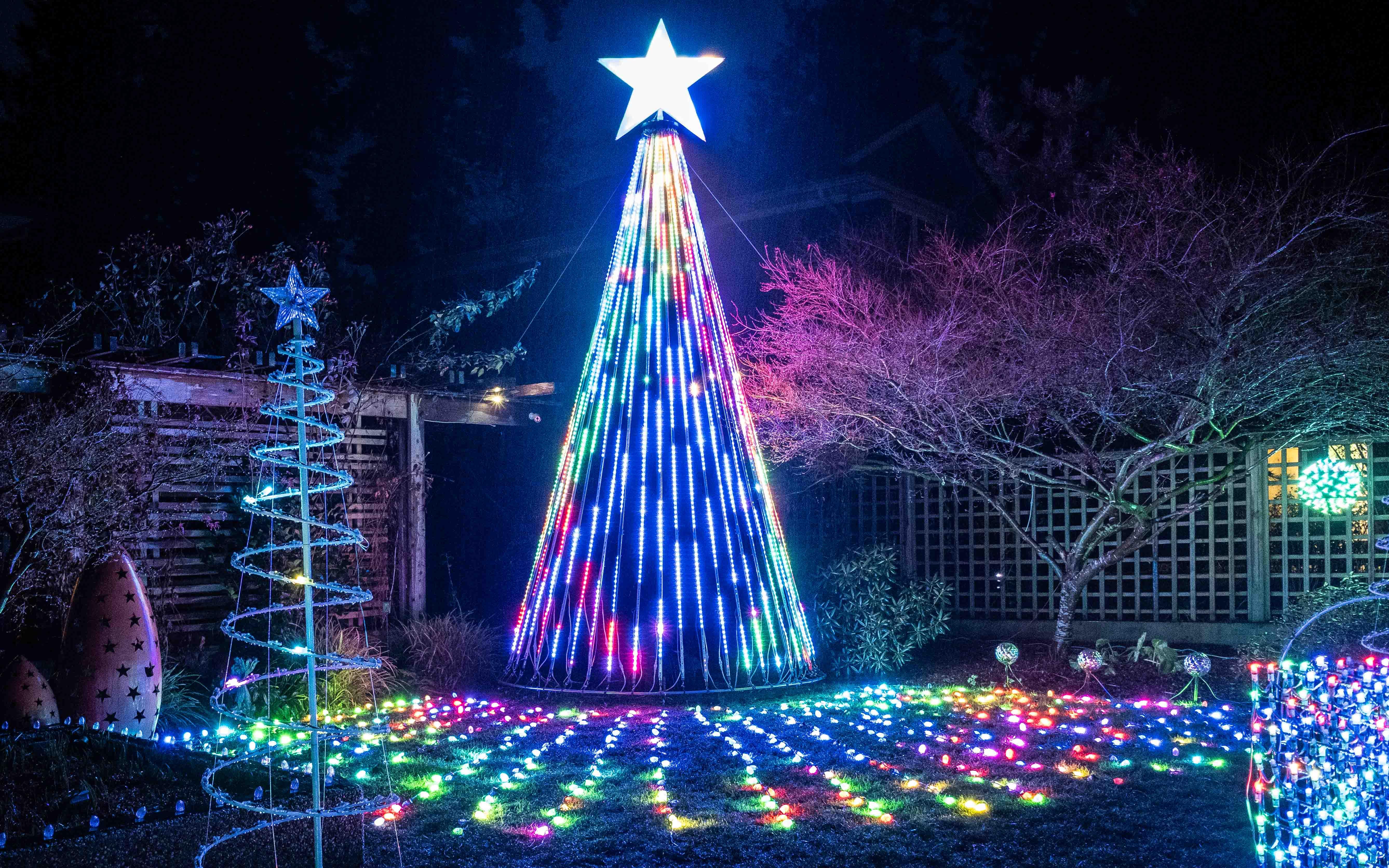 Mega Tree 2019